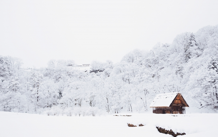 SNOW & CELEBRATIONS: JAPAN SKI DEALS